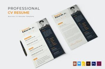 Professional Job - CV & Resume SMFY4HA 2