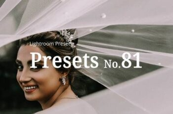 10 Wedding Lightroom Presets 5362551 5