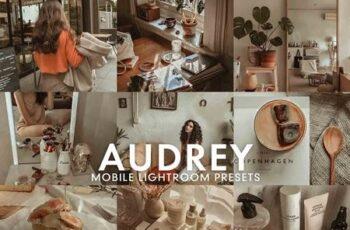 5 AUDREY Mobile Lightroom Presets 5275673 5