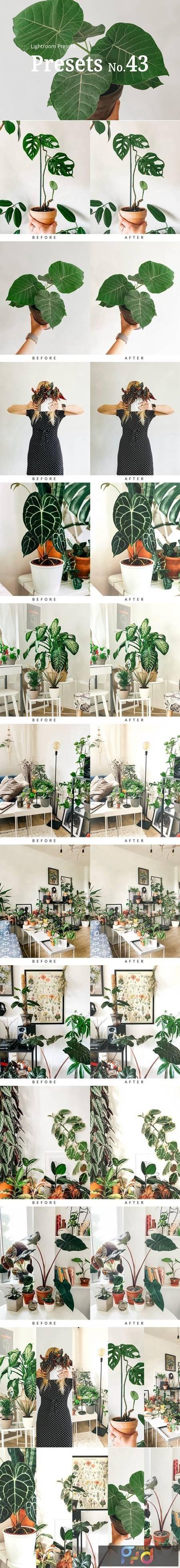 10 Light Botanical Lightroom Presets 5351307 1