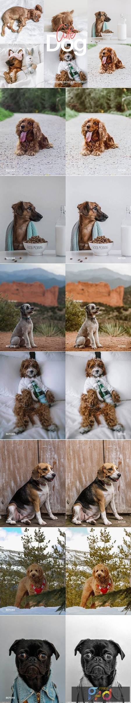 Lightroom Preset-Cute Dog Theme 4972692 1