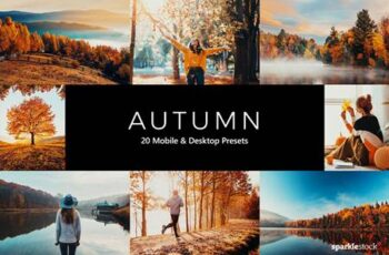 20 Autumn Lightroom Presets & LUTs TYV5HPC 4