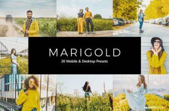 20 Marigold Lightroom Presets & LUTs K3R9BQZ 5