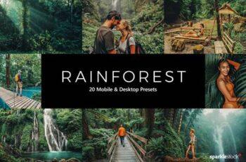 20 Rainforest Lightroom Presets & LUTs YTNH6A7 4