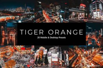 20 Tiger Orange Lightroom Presets & LUTs N6ZXFQP 5