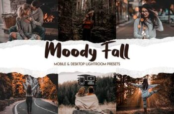 Moody Fall Lightroom Presets 9K3M825 4