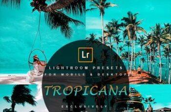 Tropicana - Lightroom Presets 28205907 4