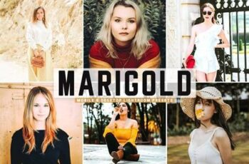 Marigold Pro Lightroom Presets 5424130 3