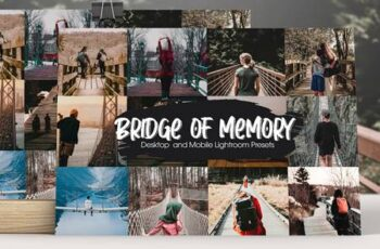 Bridge of Memory Lightroom Presets 5291104 6
