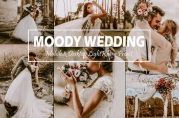 10 Moody Wedding Mobile & Desktop Lightroom Presets 5916494 4