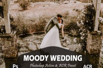 10 Moody Wedding Photoshop Actions 5919019 4