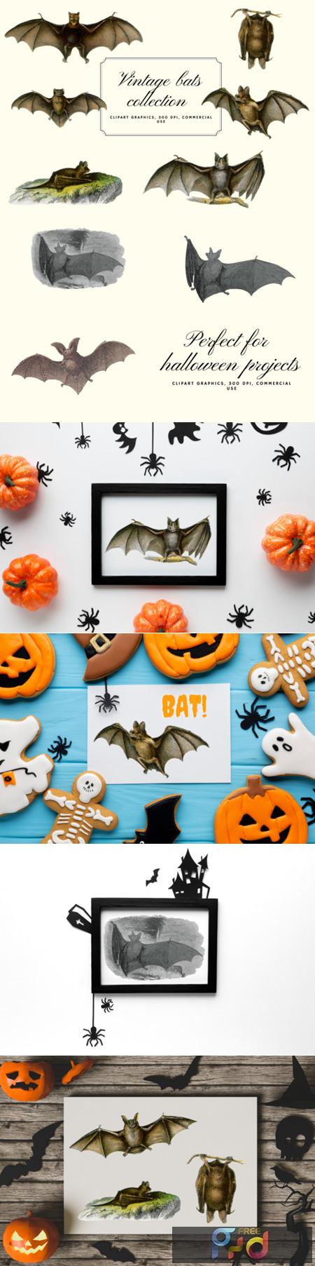 Vintage Bats Collection, Creepy Graphics 5919304 1