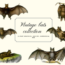 Vintage Bats Collection, Creepy Graphics 5919304 13