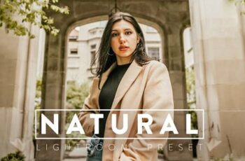 10 NATURAL Lightroom Preset 5383592 7