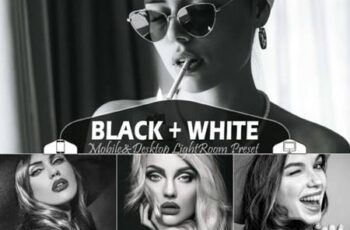 18 Black+White Lightroom Presets 5915869 11