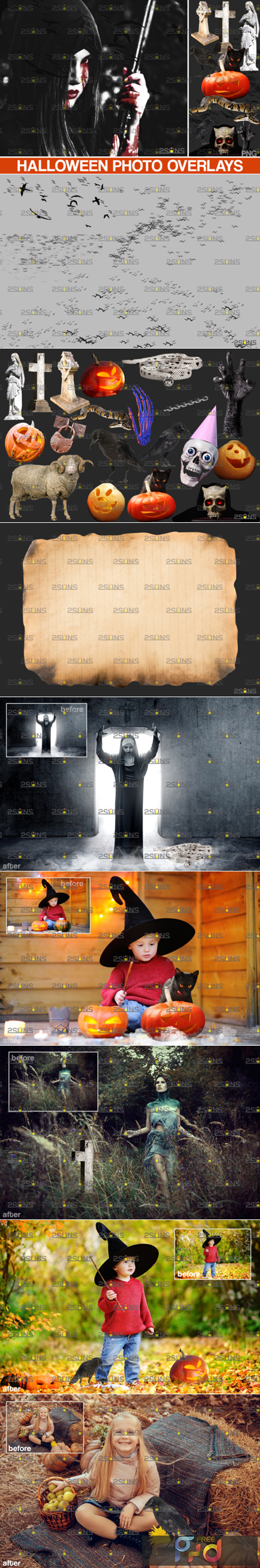 Halloween Clipart & Halloween Overlays 5542443 1