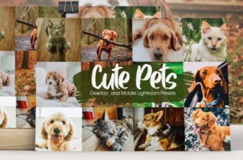 Cute Pets Lightroom Presets 6082510 2