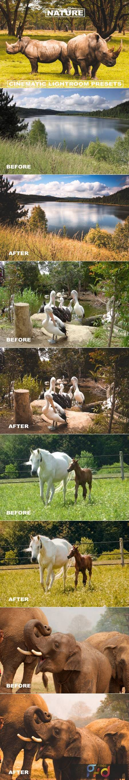 Cinematic Lightroom Presets Nature Tone 6099942 1