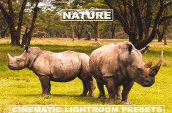 Cinematic Lightroom Presets Nature Tone 6099942 7