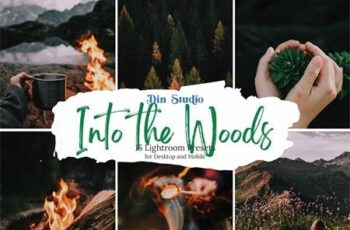 Into The Woods Lightroom Presets 5481883 6