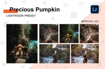 Precious Pumpkin - Lightroom Presets 5238840 5