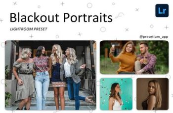 Blackout Portraits Lightroom Presets 5227291 5