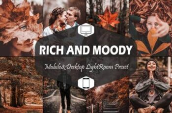 10 Rich and Moody Lightroom Presets 5916286 16