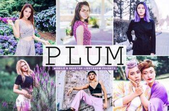 Plum Pro Lightroom Presets 5437478 2