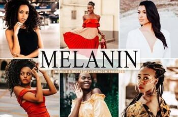 Melanin Pro Lightroom Presets 5495759 3