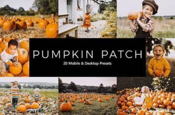 20 Pumpkin Patch Lightroom Presets & LUTs 28857178 7