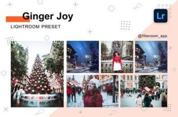 Ginger Joy - Lightroom Presets 5236549 6