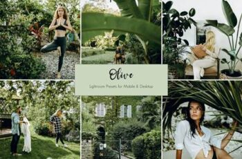 Olive Lightroom Presets 5441487 4
