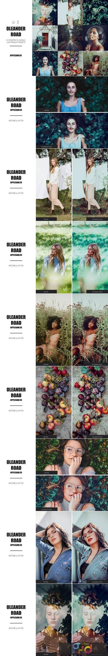 Oleander Road Lightroom Presets 5270591 1