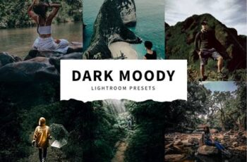 10 Dark Moody Lightroom Presets 5516121 11