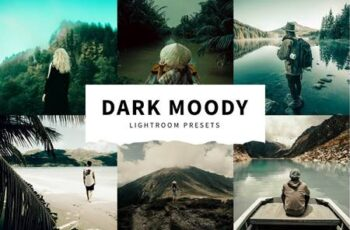 10 Dark Moody Lightroom Presets 5516122 10