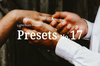 10 Wedding Lightroom Presets 5252371 12