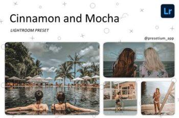 Cinnamon & Mocha - Lightroom Presets 5223025 3
