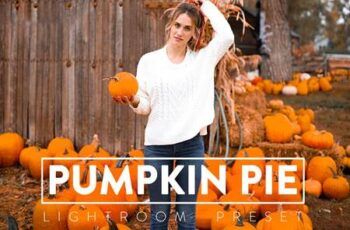 10 PUMPKIN PIE Lightroom Preset 5568485 2