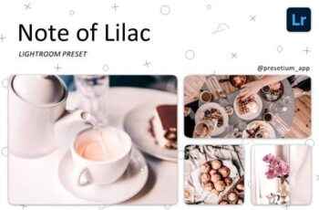 Note of Lilac - Lightroom Presets 5219737 3