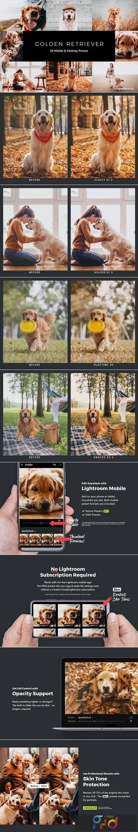 20 Golden Retriever Lightroom Presets & LUTs BD4DXVH 1