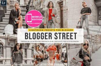 Blogger Street Lightroom Presets 3149941 7