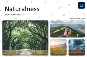 Naturalness - Lightroom Presets 5219443 2