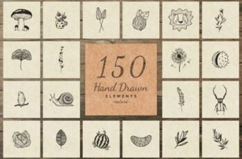 150 Hand Drawn Elements Nature III 6576141 5