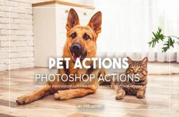 Pets Photoshop Actions 935DSLD 3