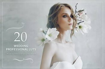 20 Wedding LUTs Pack 5602691 2
