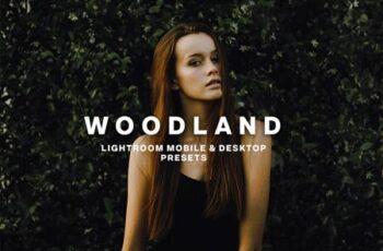 WOODLAND Lightroom Presets 5373041 2
