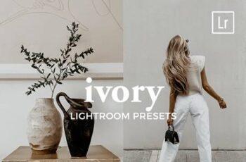 4 Lightroom Presets IVORY 5541040 7