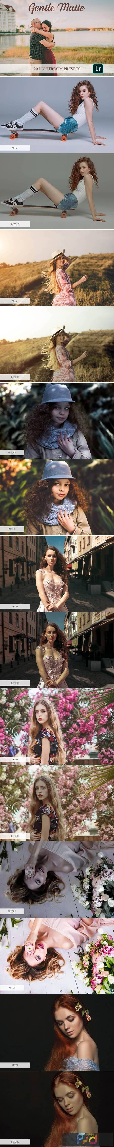 Lightroom Presets - Gentle Matte 4820446 1