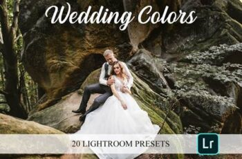 Lightroom Presets - Wedding Colors 4821653 7
