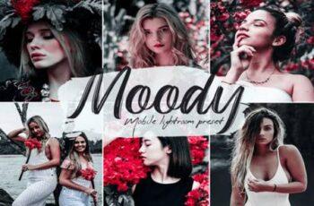 Moody Lightroom Presets 6778724 7